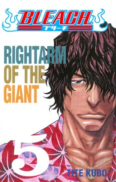 Bleach. 5, Rightarm of the giant, Tite Kubo