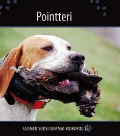 Pointteri, Petra Palukka