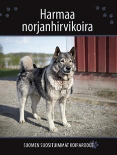 Harmaa norjanhirvikoira, Petra Palukka