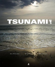 Tsunami!, Janne Miikkulainen