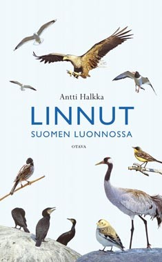 Linnut Suomen luonnossa, Antti Halkka