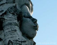 Elämänpuu kukkii = Livets träd blommar = The tree of life blooms, Sanna Karlsson-Sutisna