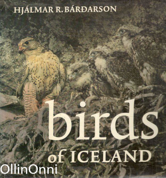 Birds of Iceland, Hjálmar R. Bárdarson