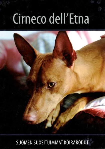 Cirneco dell'Etna - Suomen suosituimmat koirarodut, Useita