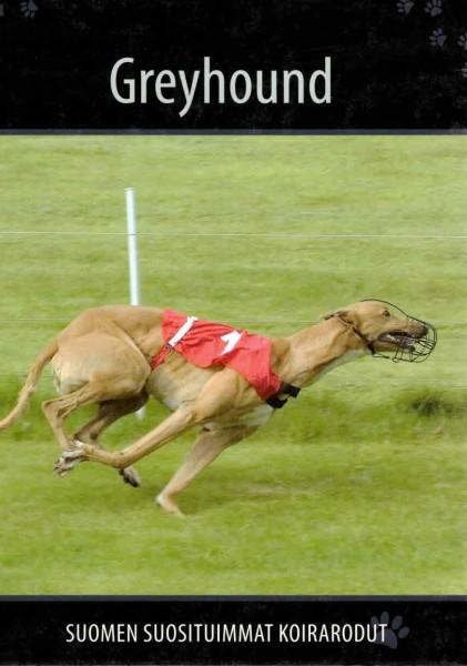 Greyhound, Petra Palukka