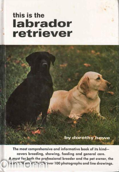 This is the labrador retriever, Dorothy Howe
